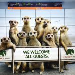 This photo has been taken at Cologne Zoo and greets at the arrival at Cologne/Bonn Airport